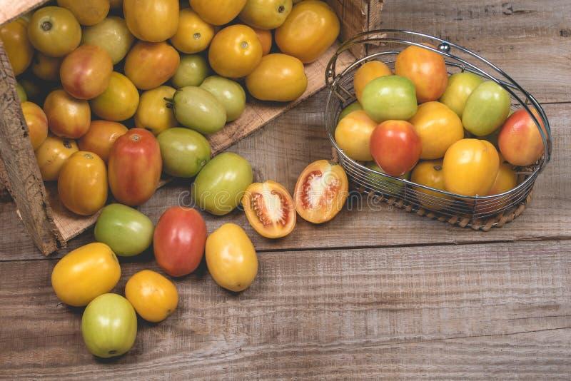在木背景的蕃茄 免版税图库摄影