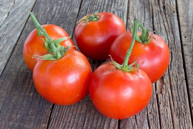 在木背景的蕃茄 库存照片