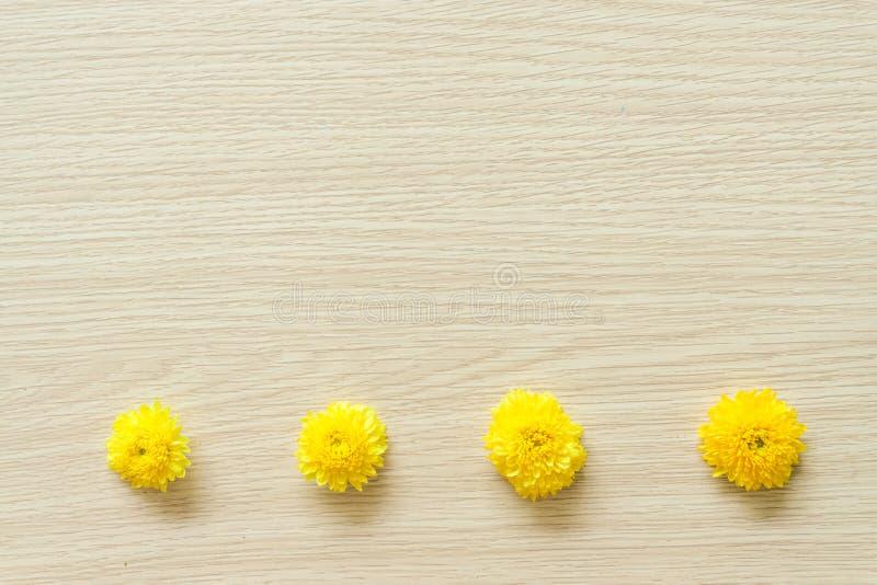 在木背景的黄色菊花,自由空间 免版税库存照片