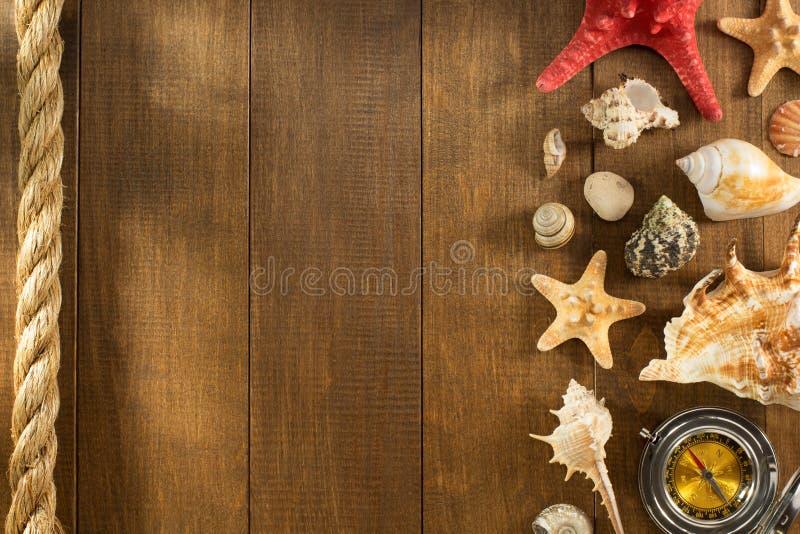 在木背景的贝壳 免版税库存照片