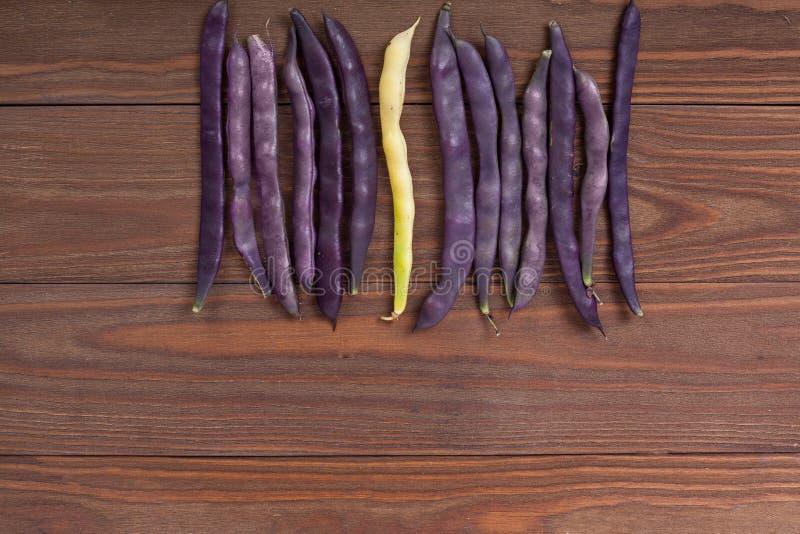 在木背景的紫色菜豆 库存图片