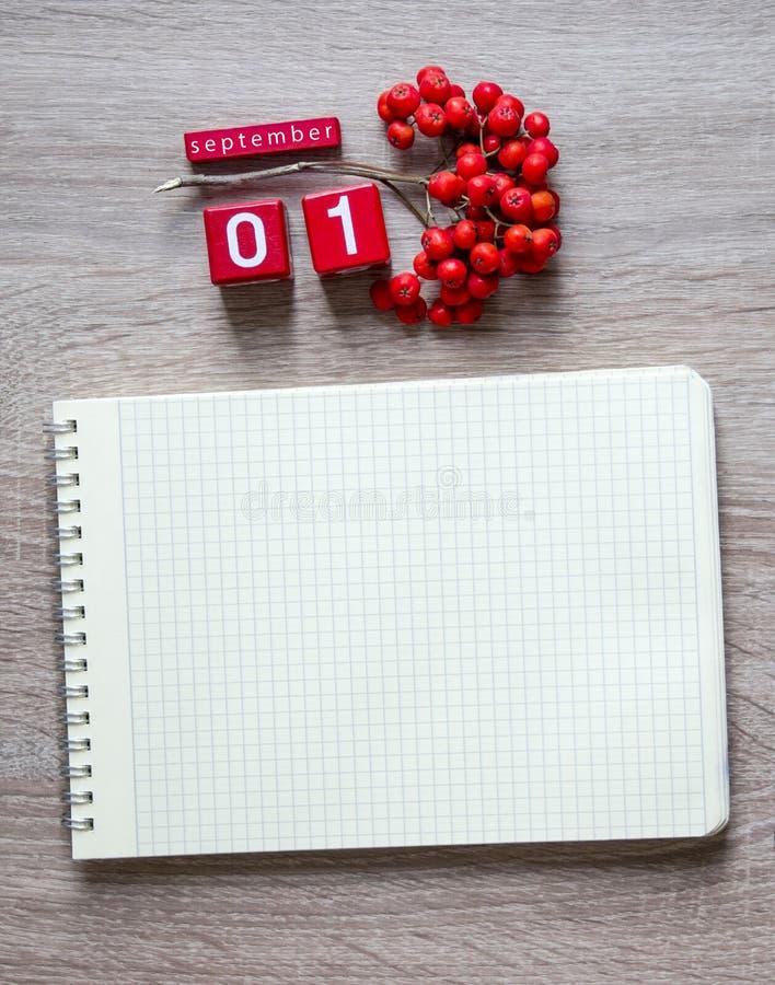 在木背景说谎一个笔记本的一个空白纸在春天铅笔和红色花揪9月桌面日历立方体的  免版税库存图片