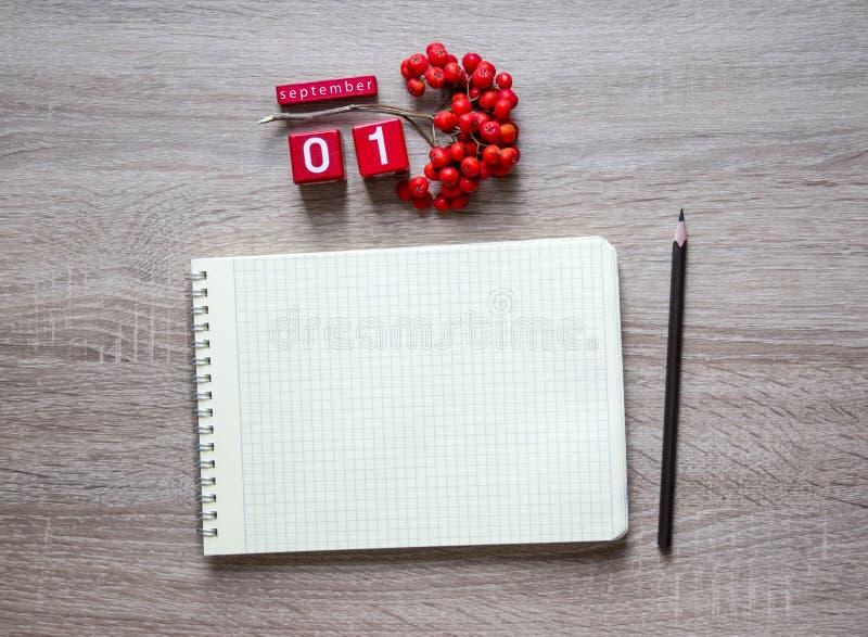 在木背景说谎一个笔记本的一个空白纸在春天铅笔和红色花揪9月桌面日历立方体的  库存图片