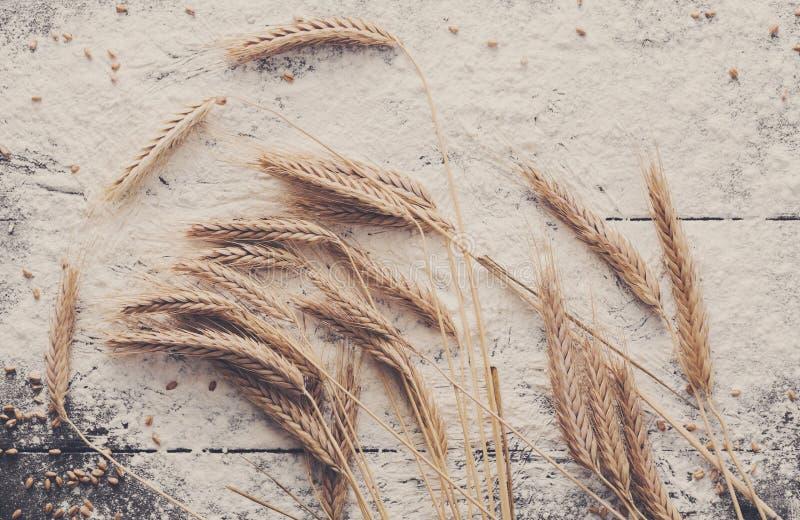 在木背景,与麦子耳朵的被洒的面粉的烘烤概念 免版税图库摄影
