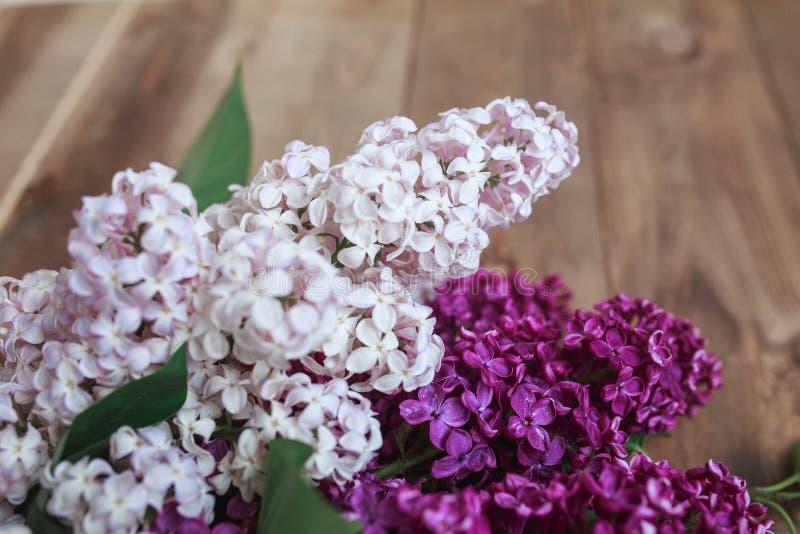 在木葡萄酒背景的新鲜的淡紫色花 与春天花的葡萄酒花卉背景 免版税库存图片