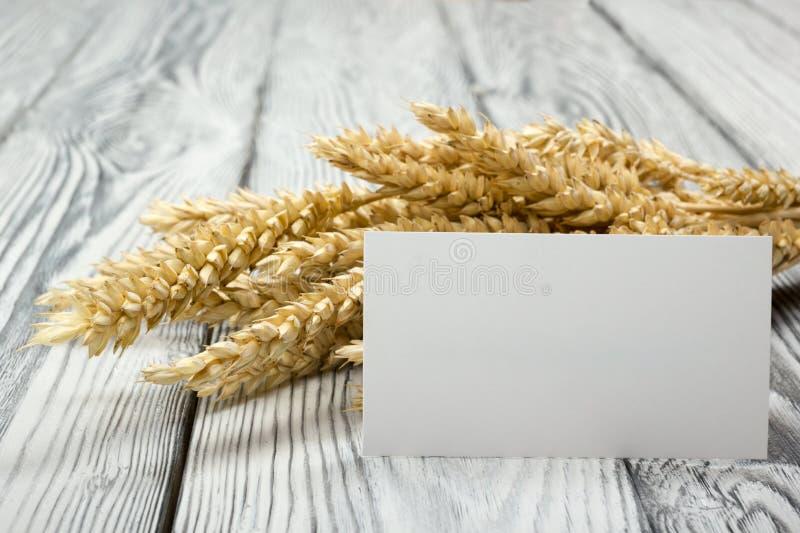 在木表上的麦子耳朵与空白的名片 捆在木背景的麦子 收获概念 免版税库存图片