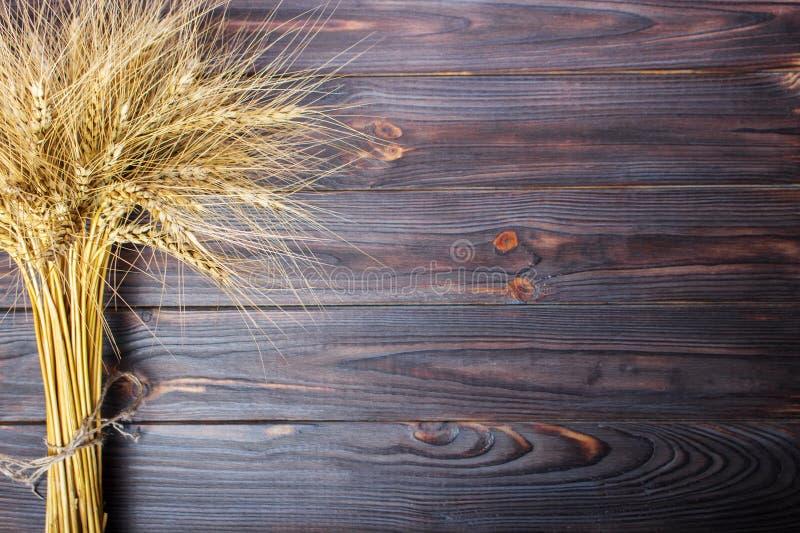 在木表上的麦子耳朵 捆在木背景的麦子 收获概念 库存照片