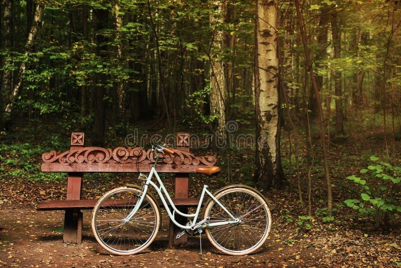 在木长凳附近的自行车 库存照片