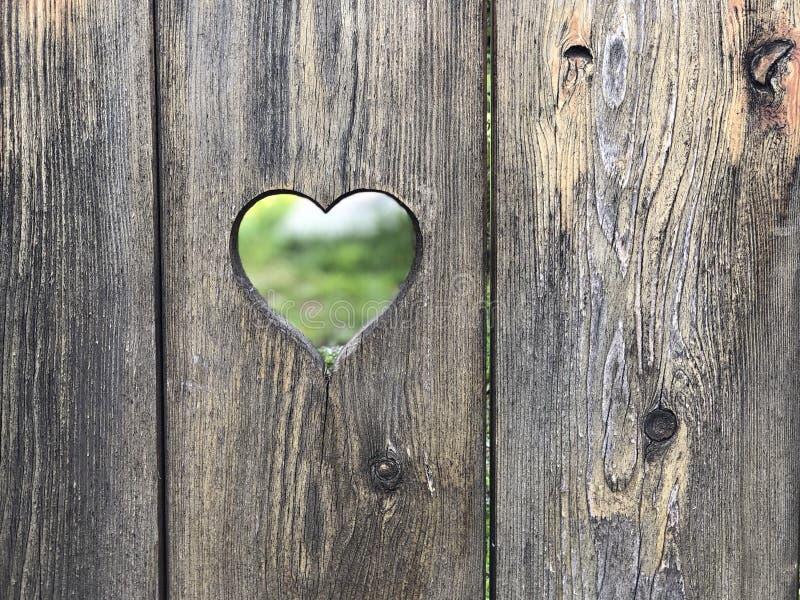 在木门的心形的孔 库存图片