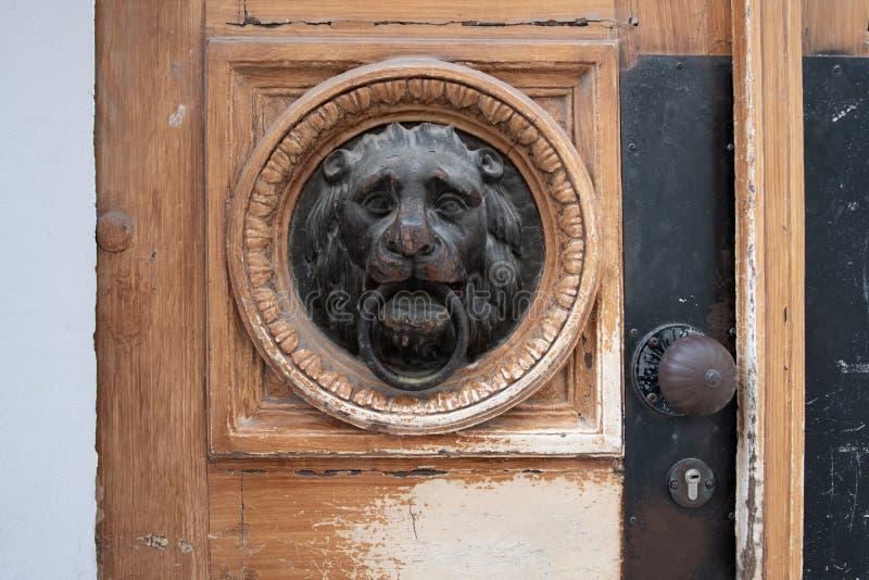 在木门的狮子顶头通道门环 库存图片
