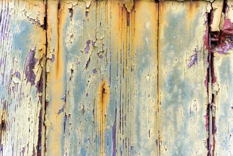 在木门的老剥落的油漆 免版税图库摄影