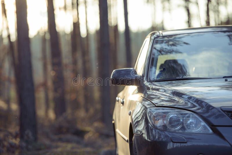 在木头旁边停放的汽车 免版税库存图片