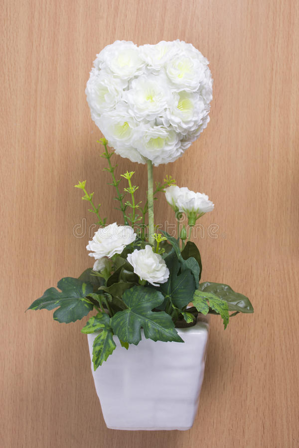 在木头的白玫瑰 库存照片