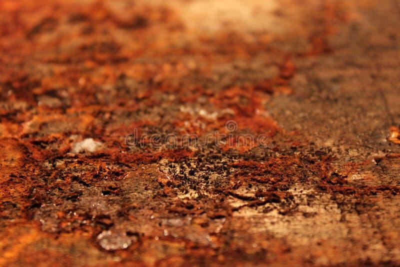 在木头的铁锈 库存图片
