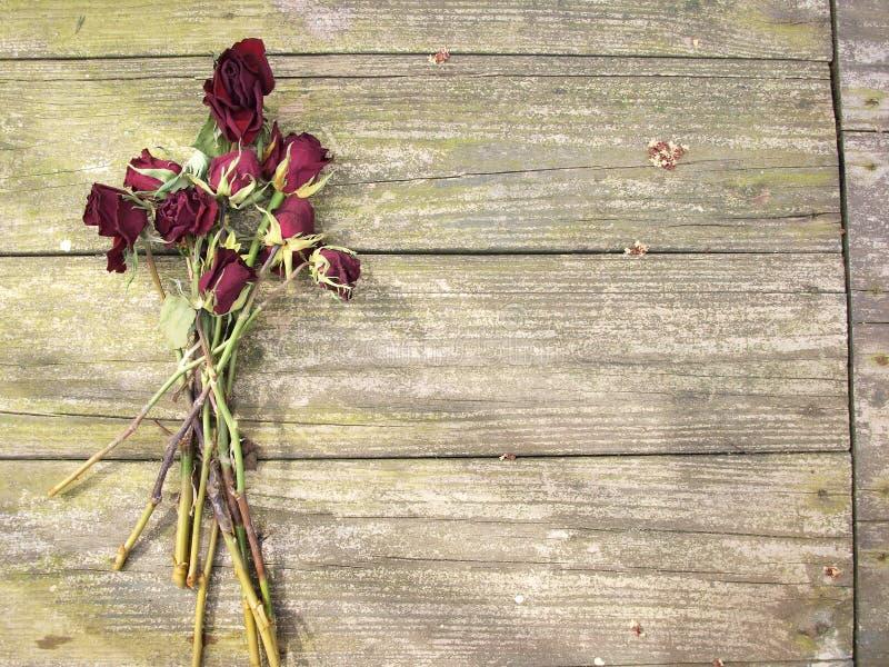 在木头的死的玫瑰 图库摄影