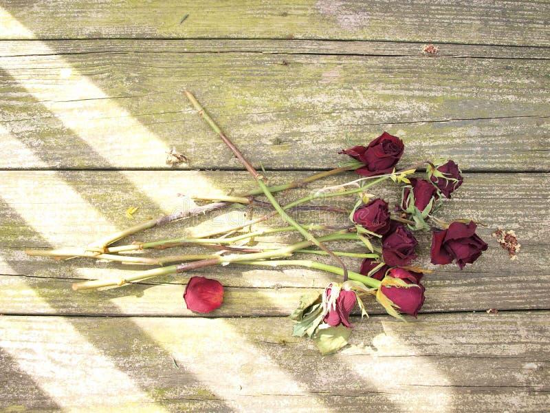 在木头的死的玫瑰 免版税图库摄影