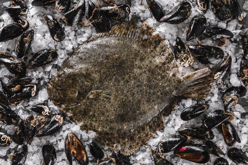 在未加工的淡菜的未加工的整个比目鱼鱼与在黑暗的石背景的切削的冰 海鲜,顶视图 图库摄影