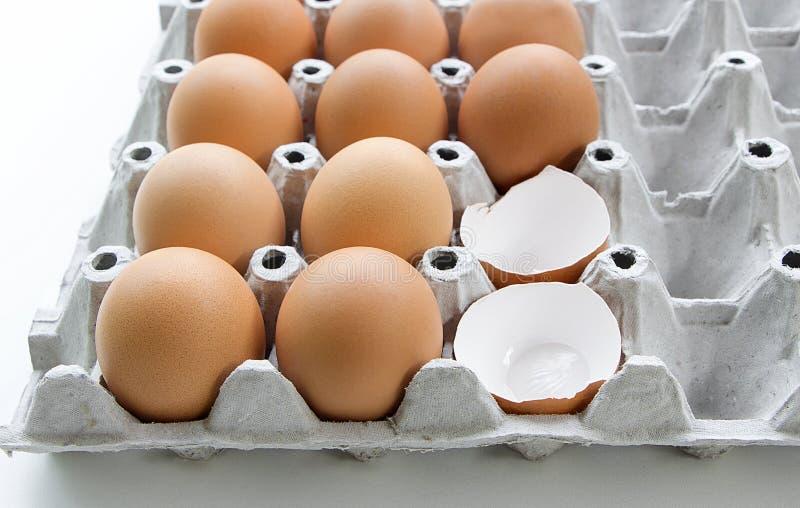 在未加工的鸡蛋盘子的许多鸡蛋  库存照片