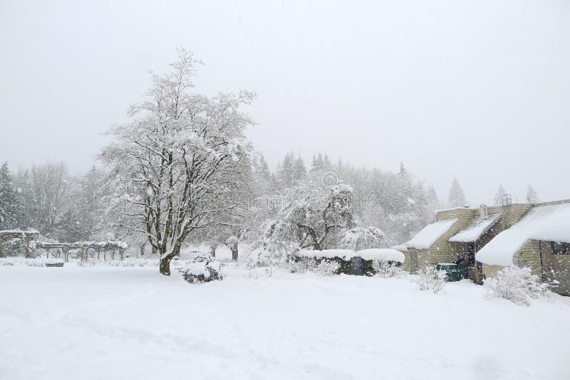 在本那比山的大雪 免版税库存图片