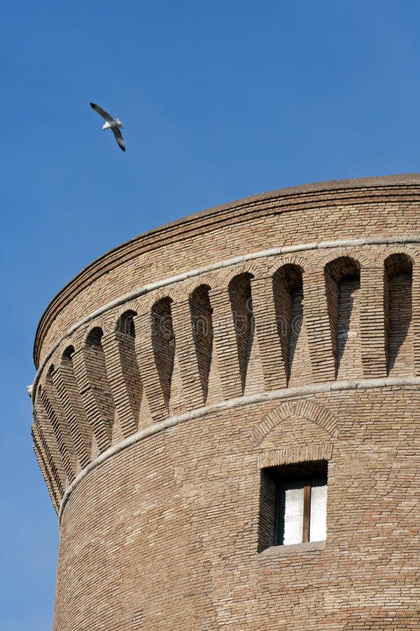 在朱利叶斯城堡的海鸥飞行ii在ostia,罗马 免版税库存照片