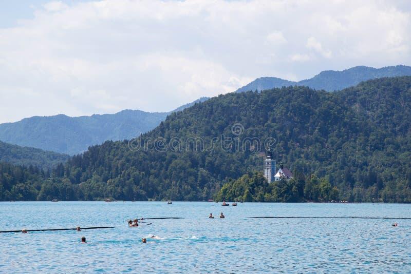 在朱利安阿尔卑斯山流血的著名湖看法,斯洛文尼亚 库存照片