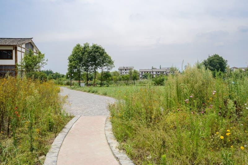 在杂草的小径对乡下在晴朗的总和的住宅大厦 免版税库存照片