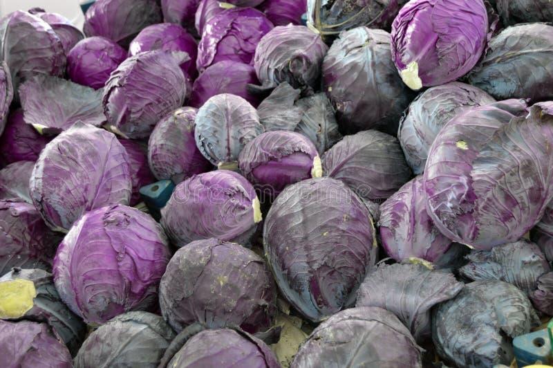在杂货店卖的黑圆白菜图片,黑胡椒是一棵健康菜 免版税库存图片