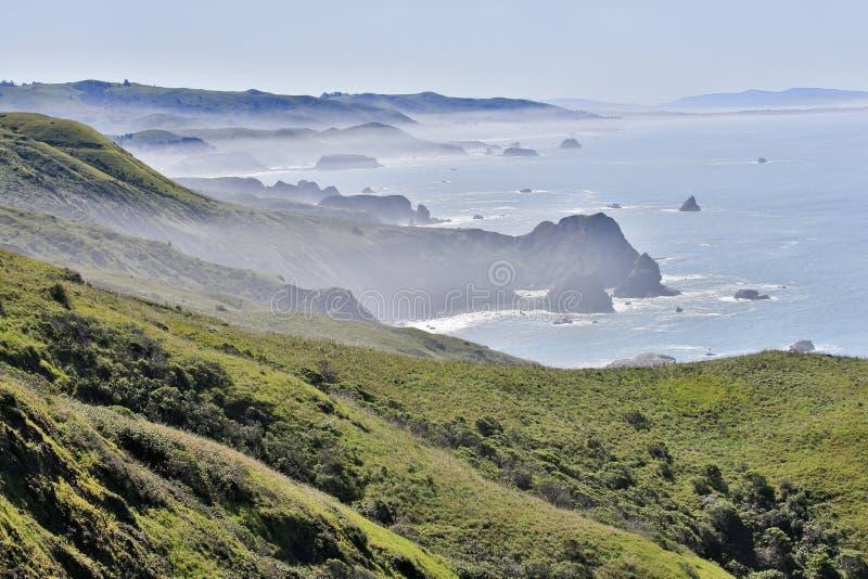 在杂货店海湾的有雾的早晨,索诺马县,加利福尼亚的太平洋海岸 库存图片