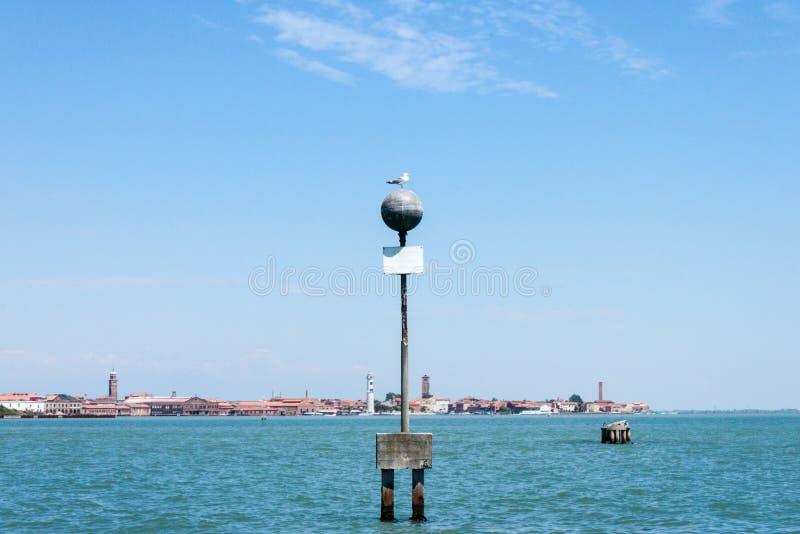 在杆的海鸥 免版税库存图片