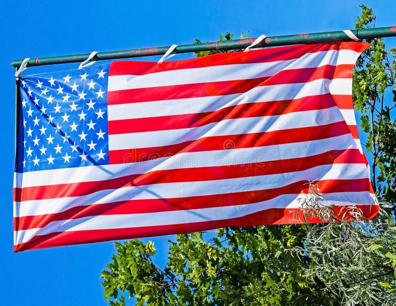 在杆的美国国旗 库存图片