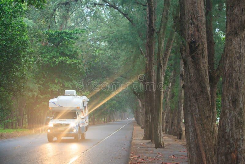 在杉木路的旅行由campervan或motorhome 库存照片