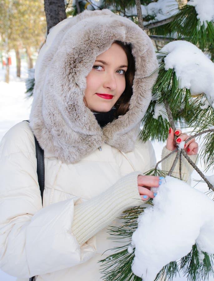 在杉树旁边的少妇与被雪包围住的分支 库存图片