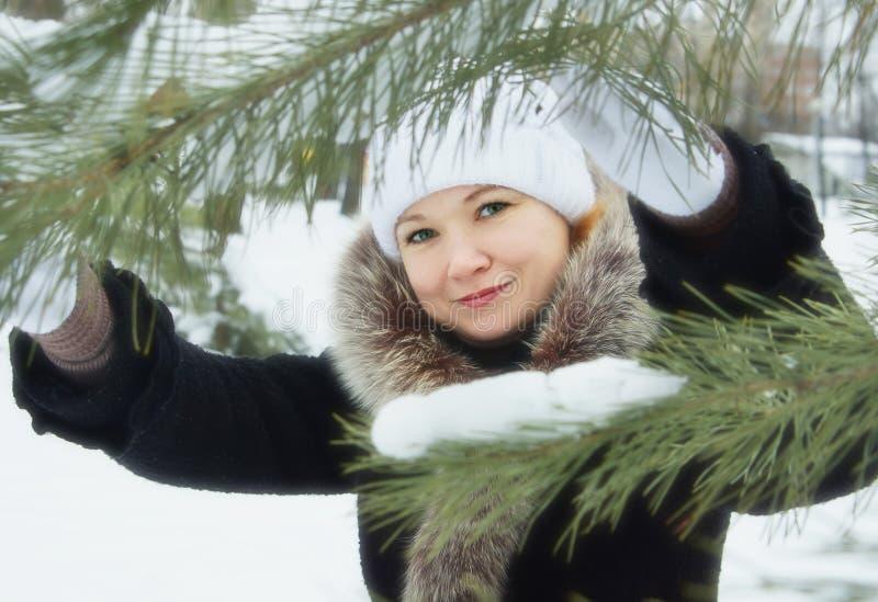 在杉树旁边的少妇在冬天公园 库存图片