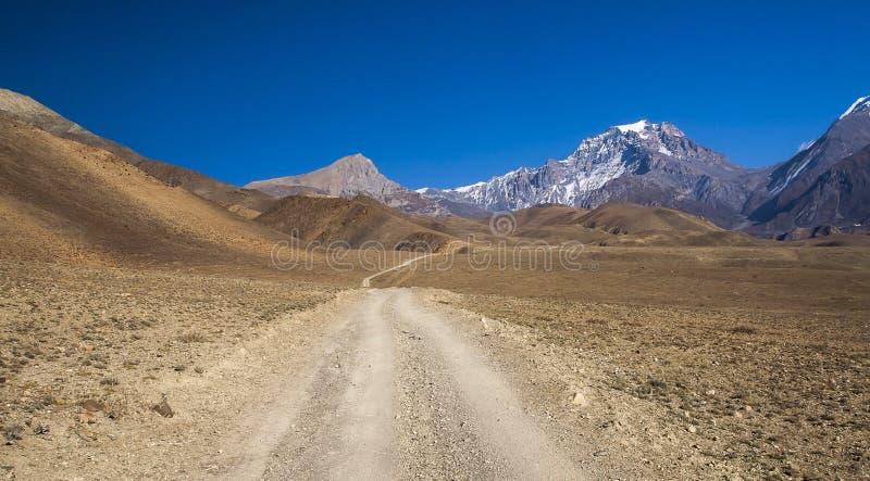 在村庄Jhong和Kagbeni之间的青藏高原 免版税图库摄影