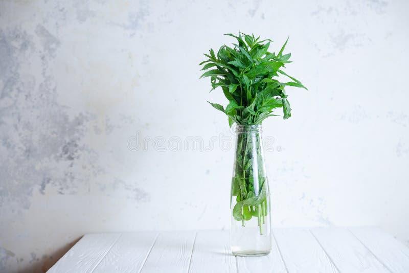 在束的接近的看法在一个花瓶瓶的薄菏有拷贝空间的 新鲜,夏天和简单派概念 r 免版税库存图片