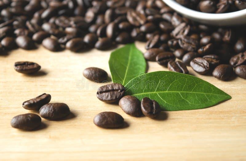 在杯子的咖啡豆有在木和黑暗的背景的叶子的 免版税库存照片