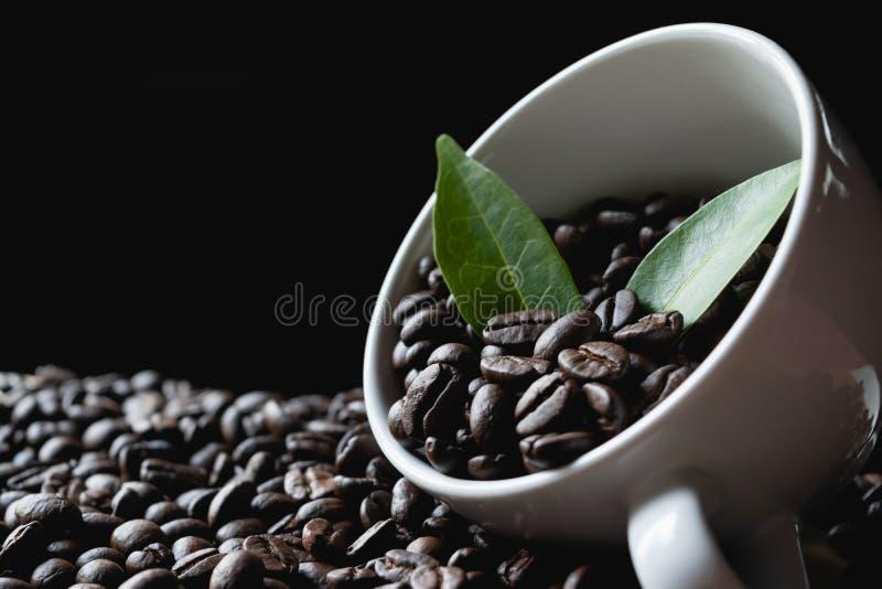 在杯子的咖啡豆有在木和黑暗的背景的叶子的 库存照片
