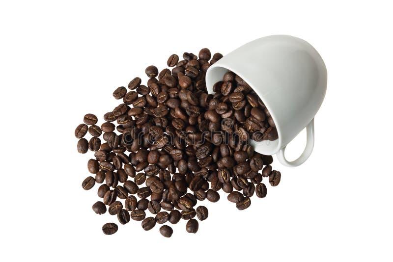 在杯子的咖啡豆 免版税库存照片