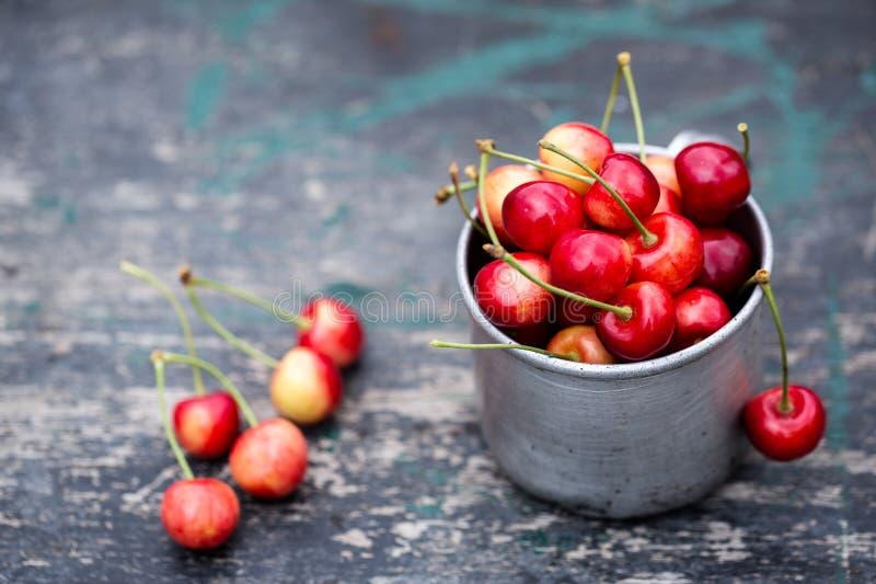 在杯子的水多的红色樱桃 库存图片