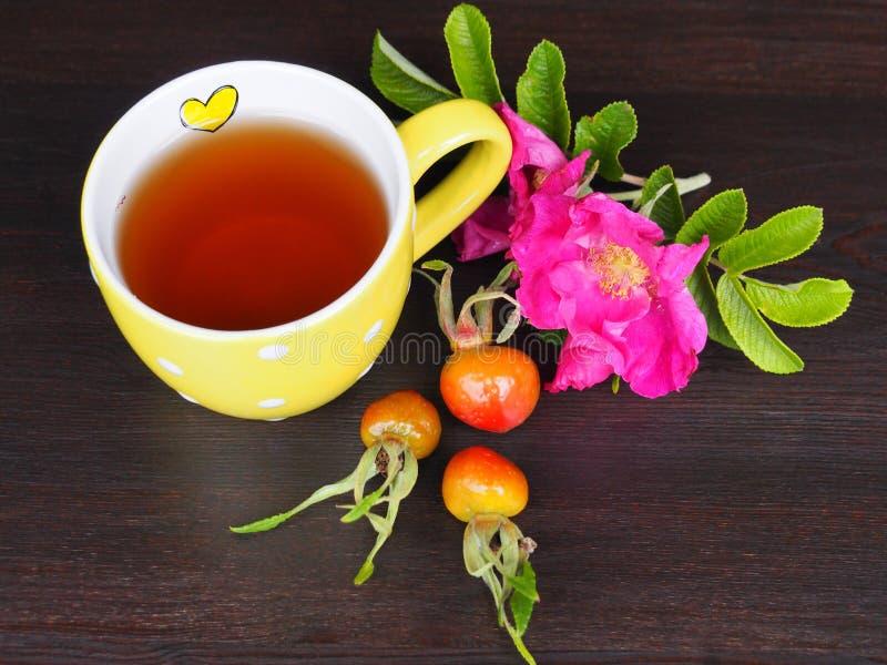 在杯的开胃和健康茶 免版税库存照片
