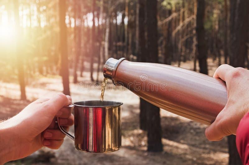在松林露营时用热水壶倒茶的人 库存图片