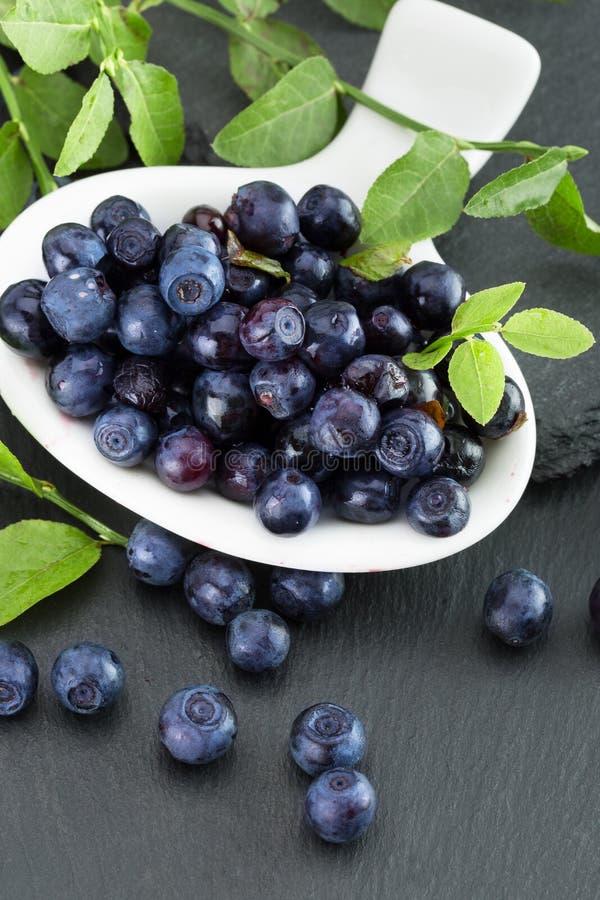 在板岩桌上的蓝莓 库存照片