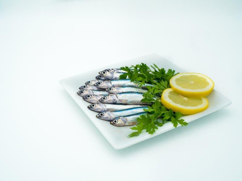 在板材的新鲜的鲥鱼 免版税库存图片