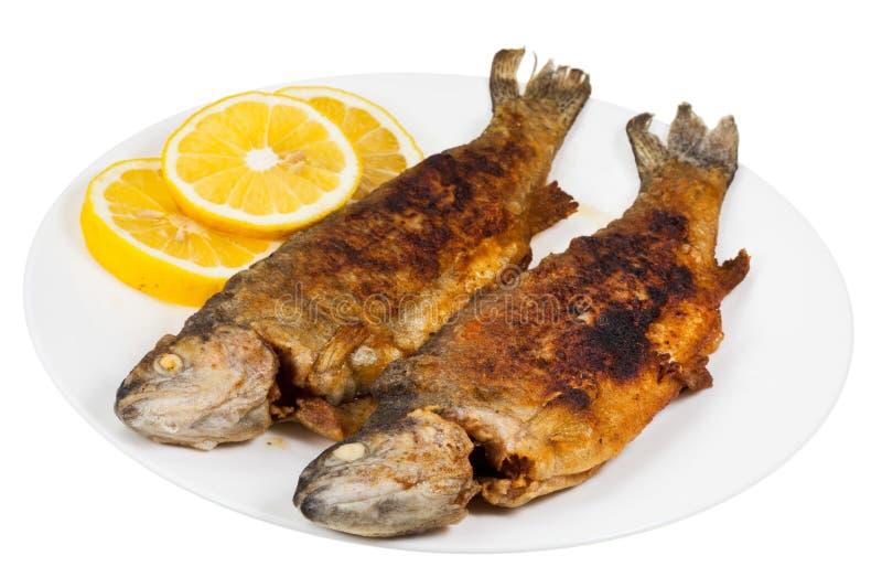 在板材的油煎的河鳟鱼鱼 库存图片