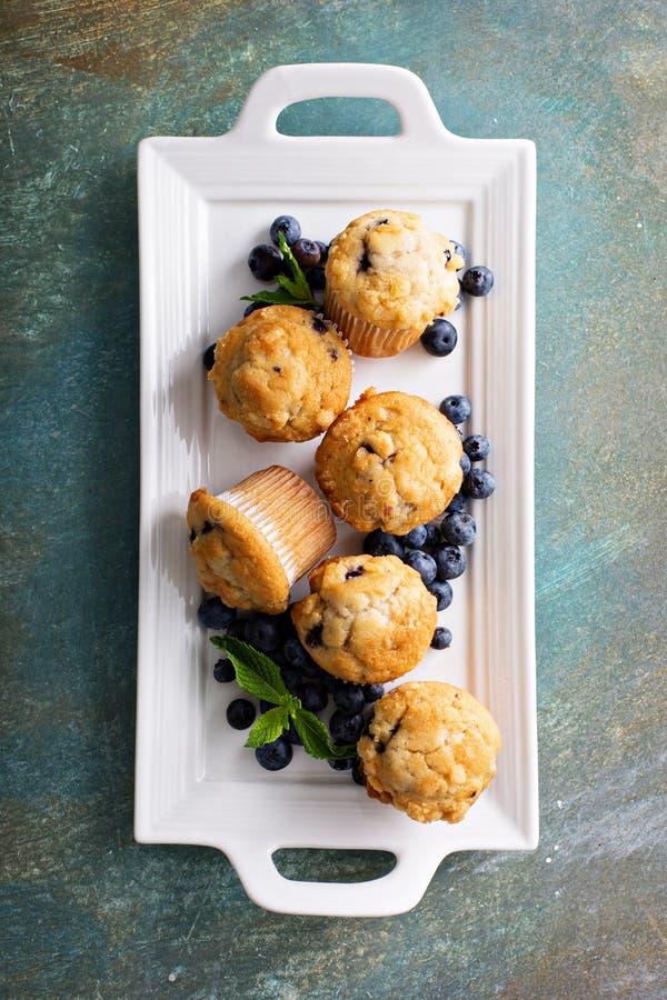 在板材的蓝莓松饼 图库摄影