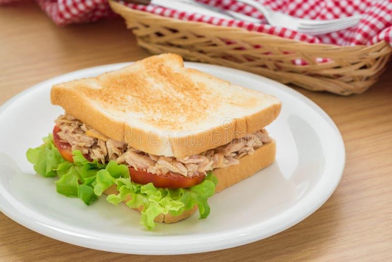Download 在板材的金枪鱼三明治 库存照片. 图片 包括有 自然, 绿色, 美食, 巴西, 片式, 制动手, 叉子, 快速 - 59108492