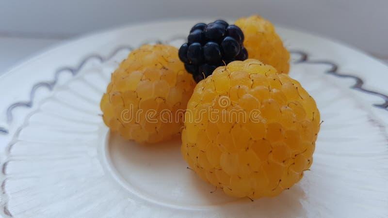 在板材的黄色莓 库存图片
