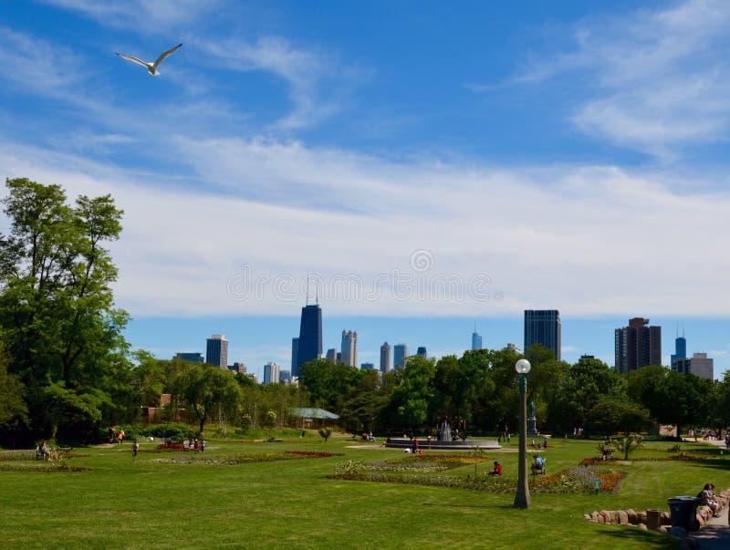 在林肯公园的芝加哥地平线 库存照片
