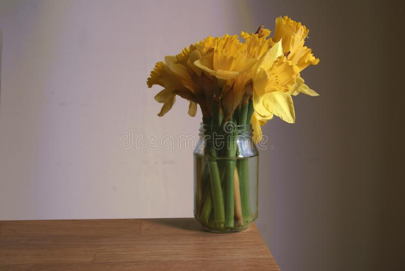 在果酱瓶子的春天花 免版税库存照片