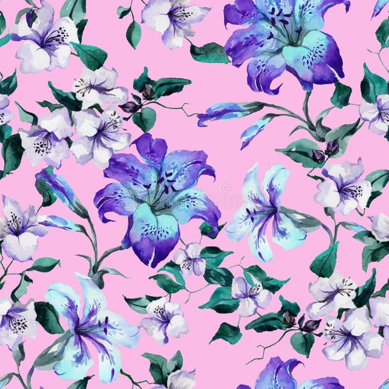 在枝杈的美丽的卷丹在桃红色背景 在生动的蓝色,紫色颜色的无缝的花卉样式 多孔黏土更正高绘画photoshop非常质量扫描水彩 向量例证
